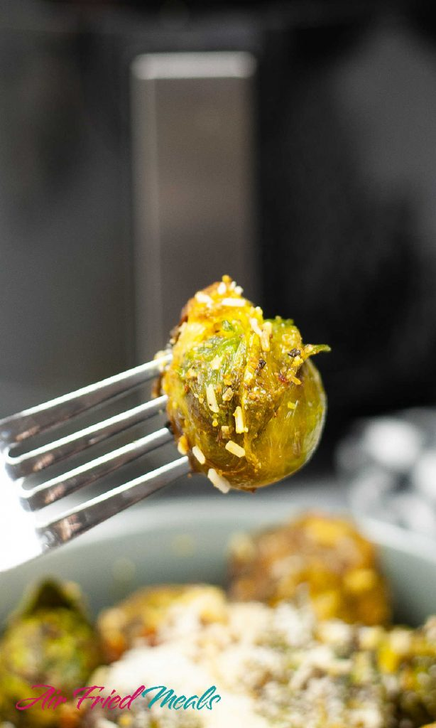 One cooked Brussel sprout with Parmesan cheese on fork tines.
